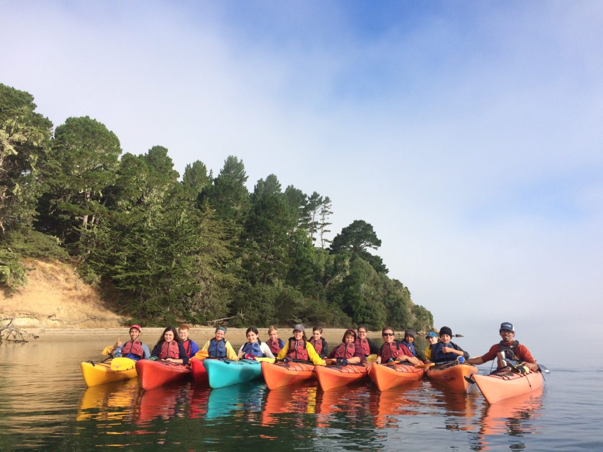 The Colors of the Kayaks!